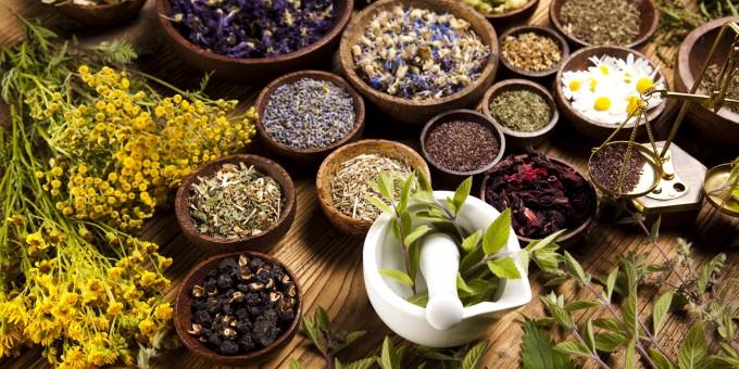 Herbal Medicine MX 680x340 1440545288